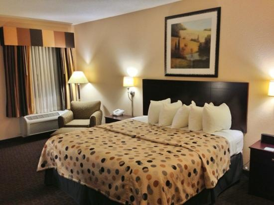 Quality Inn & Suites Peoria: King Room