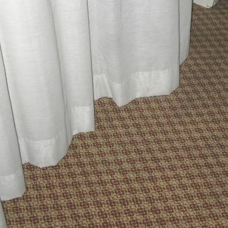 Holiday Inn Civic Center (San Francisco): Wind from outside, window closed