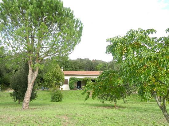Agriturismo Arnaione: i due appartamenti accanto alla piscina