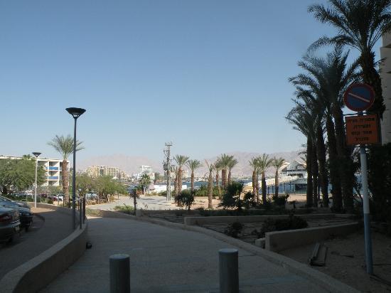 U Suites Eilat: Около отеля