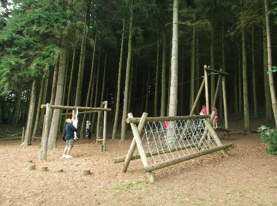 Cofton Holidays: Woodland playarea