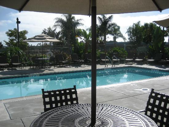 Homewood Suites by Hilton San Diego Airport - Liberty Station: Pool area.