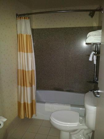 SpringHill Suites Cedar City: Shower