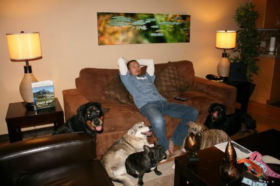 Silver Creek Lodge: Living Room with our dogs!