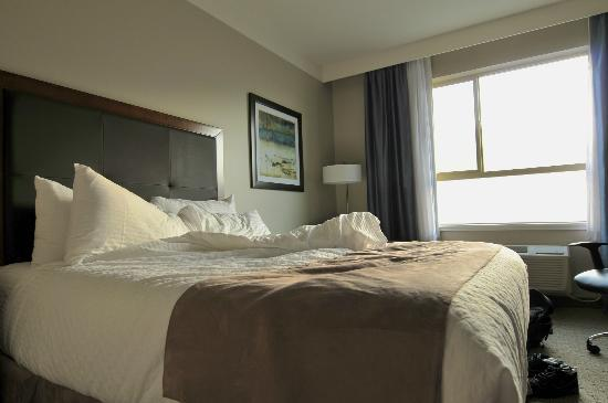 BEST WESTERN PLUS Revelstoke: Double Room