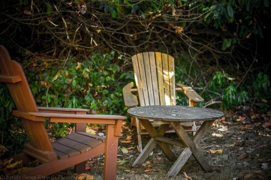 Driftwood Village: driftwood3