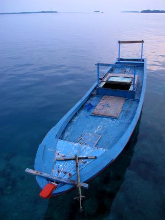 Sepa Island Resort Hotel: wooden boat