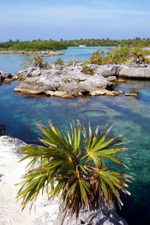 Grand Sunset Princess All Suites Resort: the lagoon adventure maya snorkel tour