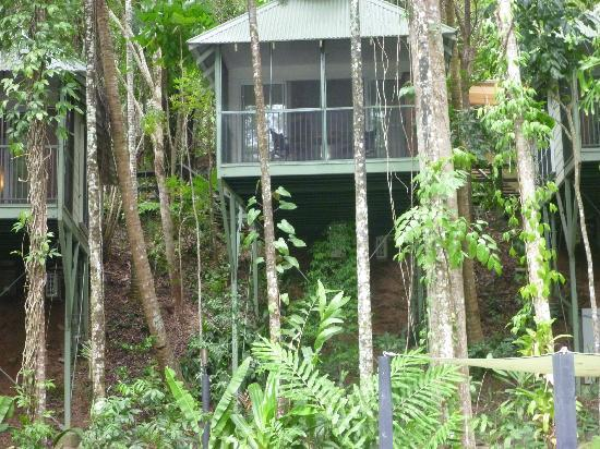 Daintree EcoLodge & Spa: Cabin overlooking pond and dining area