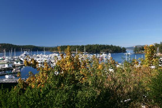写真Roche Harbor Resort枚