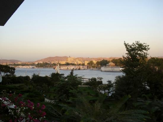 Movenpick Resort Aswan: The view from our room!!!