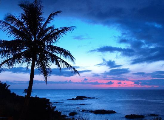 Kona Farmers Market : Beautiful Hawaii