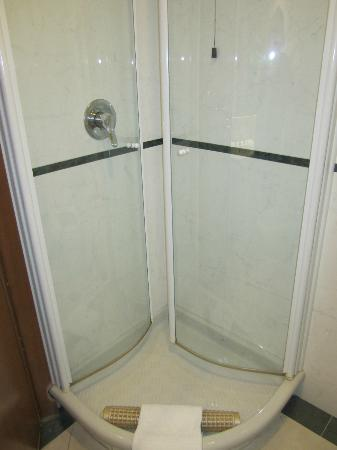 Hotel Cicerone: Typical italian shower (tiny)