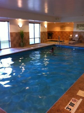 Hampton Inn Indiana : pool