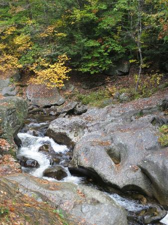 Sculptured Rocks Natural Area: Fall foliage