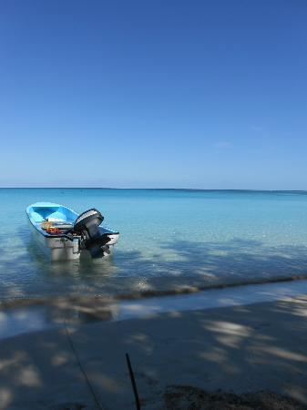 Oarsman's Bay Lodge: clear blue water