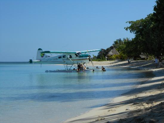 Oarsman's Bay Lodge: The plane, the plane....