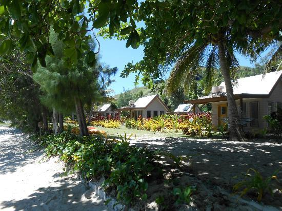 Oarsman's Bay Lodge: Beachfront bures