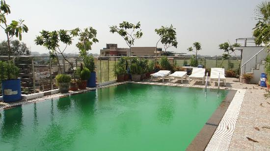 Hotel Taj Resorts: Pool on the roof