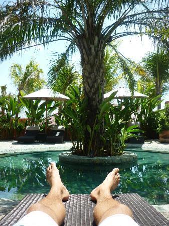 PinkCoco Bali: Relaxen am Pool
