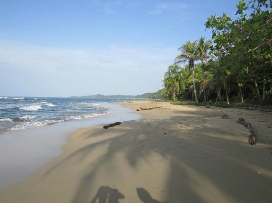 Villas del Caribe: strand