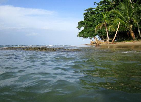 Villas del Caribe: strand en zee