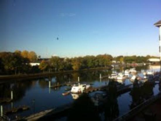 Radisson Blu Hotel, Athlone: View from our bedroom