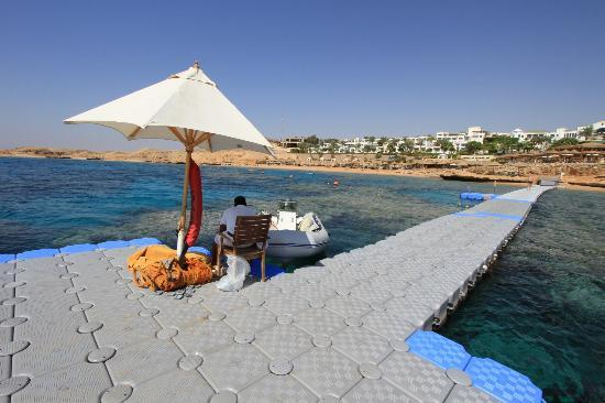 Hyatt Regency Sharm El Sheikh Resort: Grounds & Beach
