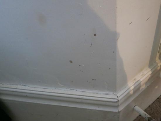هولين هول كانتري هاوس هوتل: Stains on wall 