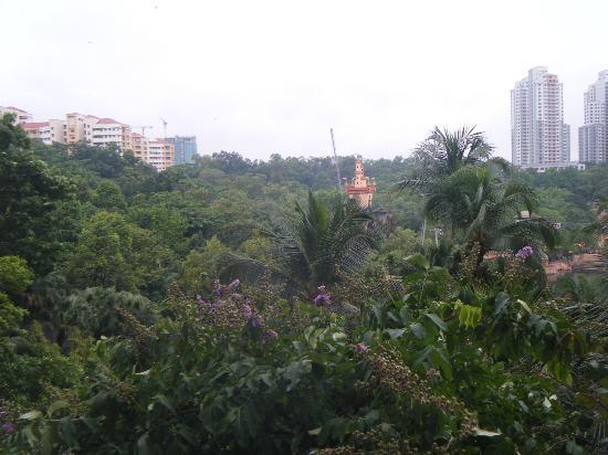 Sunway Resort Hotel & Spa: water park