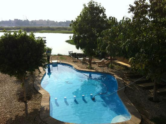 Al Baeirat Hotel : View of the lovely pool bordering the NIle
