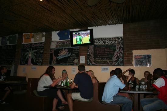 Cardboard Box Hostel: Africa cup 2012