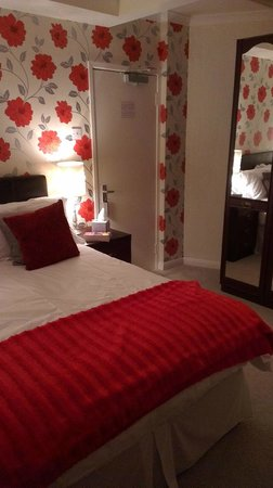 Arden Guest House: My room with the furry scarlet throw