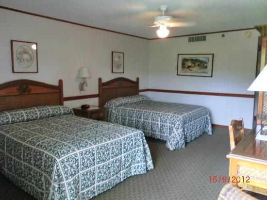 カアナパリ ビーチ ホテル , Room