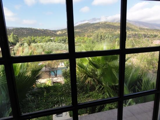 Domaine Malika: beautiful view from the bedroom window