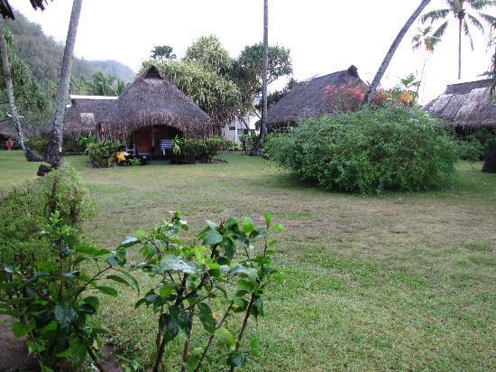 Hotel Hibiscus: jardin