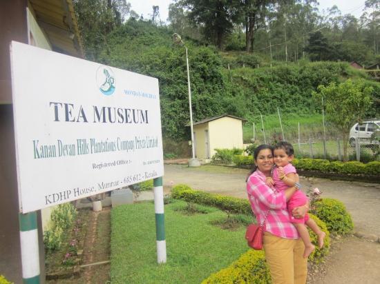 Kannan Devan Tea Museum: tea garden