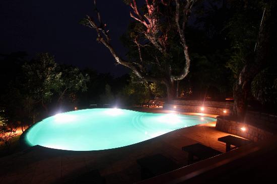 Flameback Lodges: Pool at night