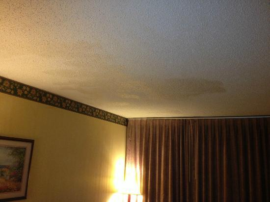 Red Roof Inn Fredericksburg South: patched ceiling