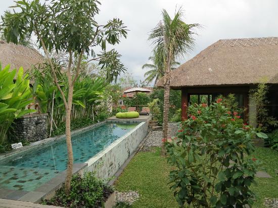 The Garden Picture Of Luwak Ubud Villas Tripadvisor