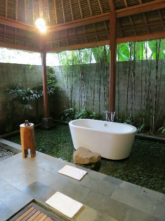 Luwak Ubud Villas: The toilets/bathroom + red fish around bathtub