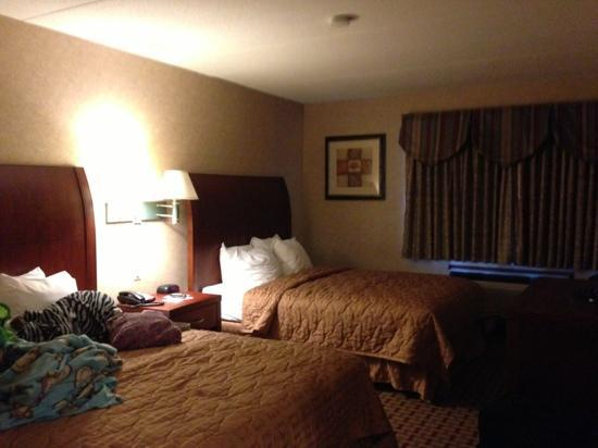 Comfort Inn & Suites : Sleeping Area