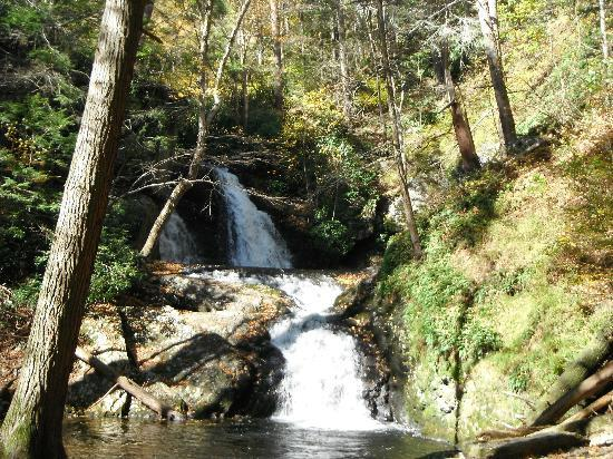 Pocono Environmental Education Center: Tumbling Waters trail