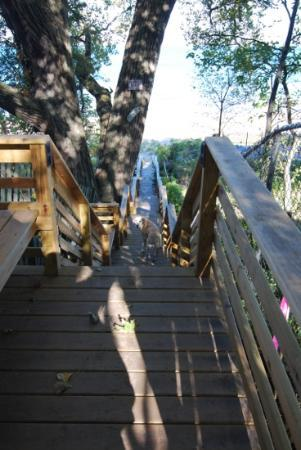 Fire Fly Resort: Stairway to private beach