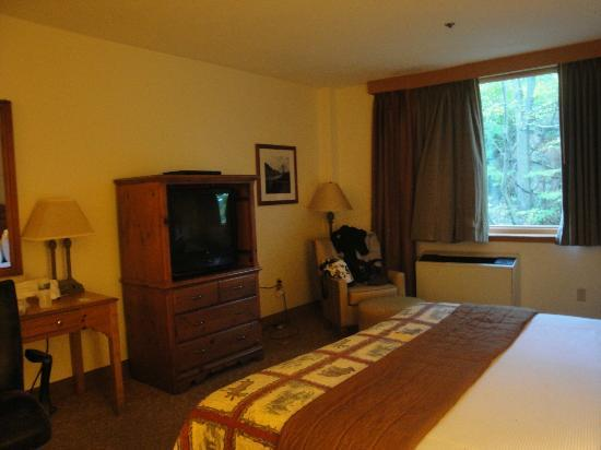 Bear Mountain Inn's Overlook Lodge: Comfy