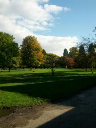 Didsbury Park