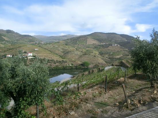 Quinta do Pego: sight from the garden terrace