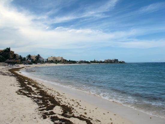 Playa Blanca Condominiums: Beach area looking north.