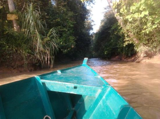 Sukau Rainforest Lodge: oxbow lake