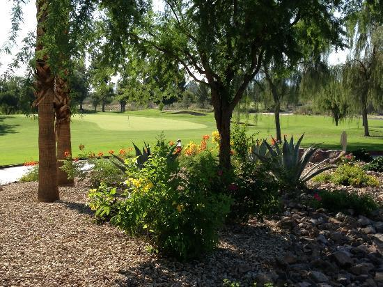 Marriott's Shadow Ridge I-The Villages: Grounds